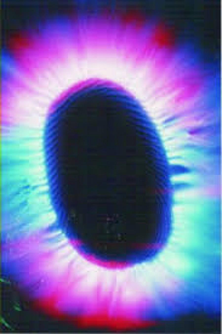 Bioeletrografia, Fotos Kirlian, Fotos da Aura, Fotos da Alma ?